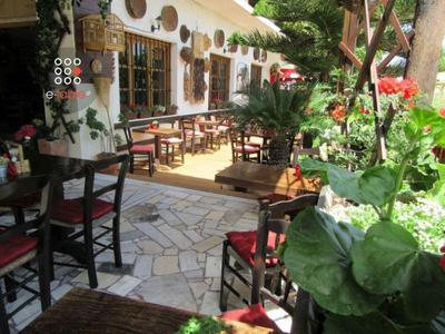 Taverna Mitato - εικόνα 6