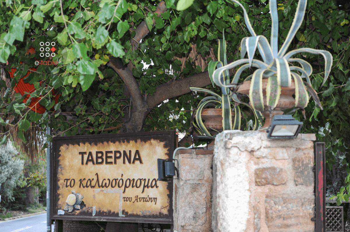 Καλωσόρισμα Του Αντώνη - εικόνα 3