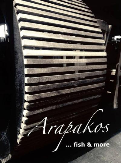 Arapakos  - εικόνα 6