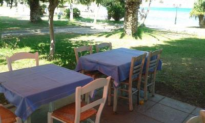 Alianthos - εικόνα 2
