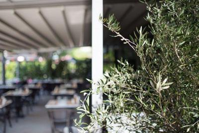 Μαύρο Πρόβατο του Press Café (Το) (Μελίσσια) - εικόνα 3