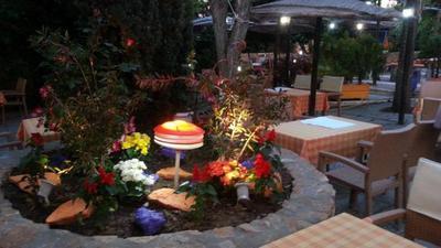 Κήπος (Ο) - εικόνα 6