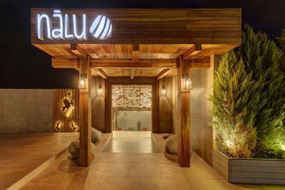 Nalu - εικόνα 1