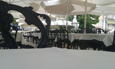 Olive tree - εικόνα 3
