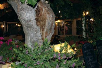 Taverna Nikos - εικόνα 5