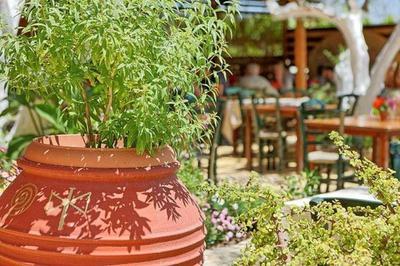 Pasiphae Restaurant - εικόνα 7