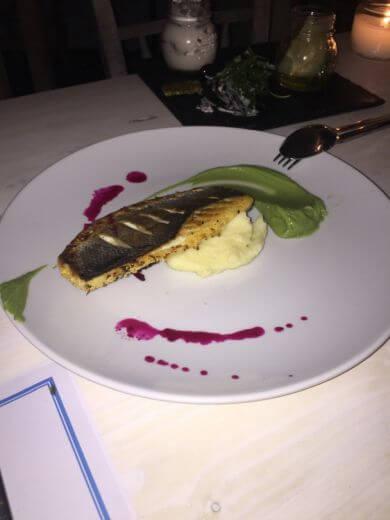 Bluefish - εικόνα 5