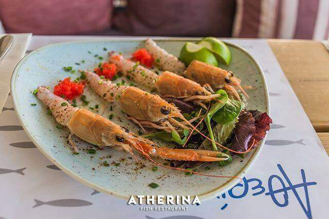 Atherina - εικόνα 1