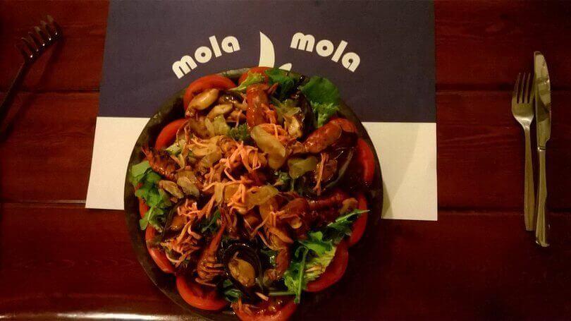 mola mola - εικόνα 1