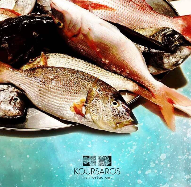 Koursaros Kolonaki - εικόνα 2