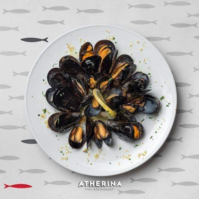 Atherina - εικόνα 5