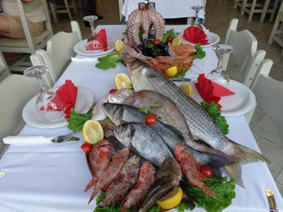 Tropicana restaurant - εικόνα 4
