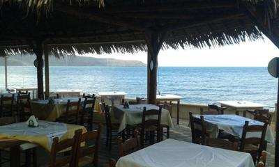 Meltemi Traditional Restaurant and Pizzaria - εικόνα 3