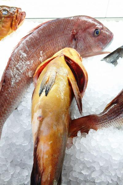 Ψαρομαγεία - εικόνα 3