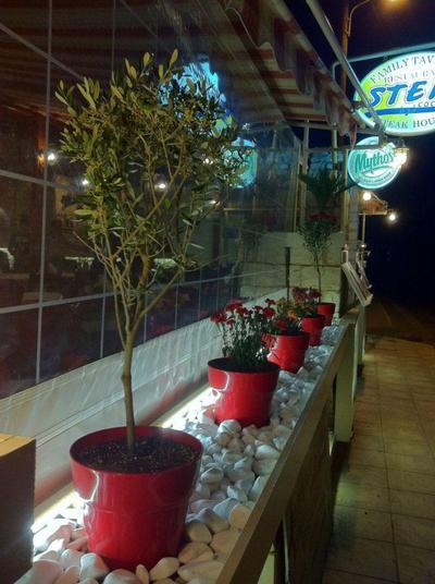 Steki Family Restaurant - εικόνα 1