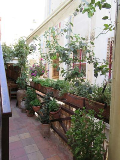 Minos Restaurant - εικόνα 3