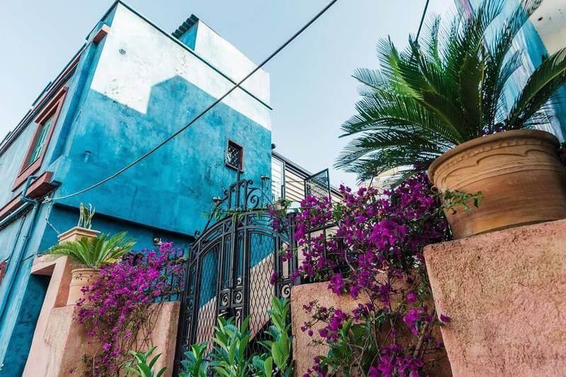 La Casa Azul - εικόνα 5