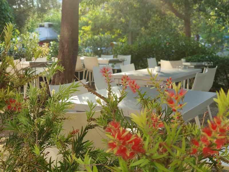 Βασίλαινας εστιατόριο - εικόνα 2